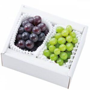 ぶどうを岡山の果樹園からお取り寄せ